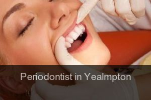 Periodontist in Yealmpton